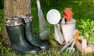 lawn care services harlow